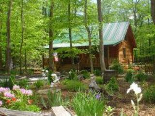 Creekside Serenade - Image 1 - Todd - rentals