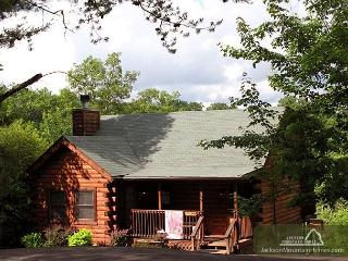 Three Bears Cabin   Views Gaming Hot Tub Jetted Tub WiFi   Free Nights - Gatlinburg vacation rentals