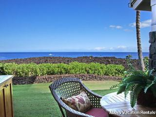 Waikoloa 1 BR/2 BA Condo (W2-HALII 14B) - Waikoloa vacation rentals