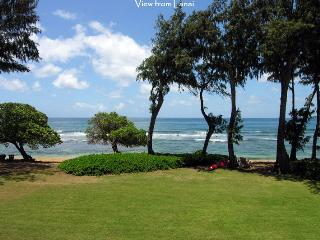 Islander on the Beach, Condo 225 - Kauai vacation rentals