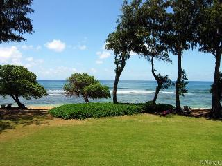 Islander on the Beach, Condo 224-25 - Kapaa vacation rentals