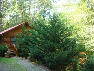 BEAR HUG CABIN*2 BR/1 BA CABIN LOCATED WITHIN WALKING DISTANCE OF CHERRY LAKE AND BENTON MACKAY TRAIL!~14 FT MAD RIVER CANOE~WiF - Blue Ridge vacation rentals