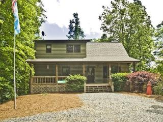 BLUEGRASS HOLLOW*PRIVATE 3 BDR/3 BA CABIN ON 5 ACRES~WIFI~JETTED TUB~GAMEROOM WITH POOL & FOOSBALL TABLES~PRIVATE HOT TUB~GAS LO - Blue Ridge vacation rentals