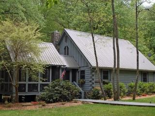 DREAM BY THE STREAM*3BR/2BA~CHARMING ROMANTIC RETREAT BY STREAM~CHARCOAL GRILL~GAS LOG FIREPLACE~LARGE YARD~FIRE PIT~SCREENED PO - North Georgia Mountains vacation rentals