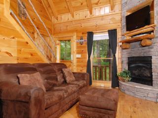 Arbor Place Cabin - Gatlinburg vacation rentals