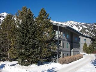 3.5bd/3ba Rendezvous D 3 - Teton Village vacation rentals