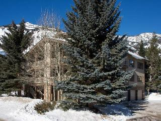 Cozy 2 bedroom Teton Village Apartment with Internet Access - Teton Village vacation rentals