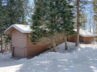 3bd/3ba Baily House - Teton Village vacation rentals