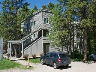 2bd/2ba Mountain Maple #3 - Wilson vacation rentals