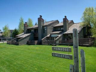 2br/2ba Primrose 1712 - Wilson vacation rentals