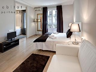 Lauria Suites, 2 bedroom near Gaudi's Casa Batlló - Barcelona vacation rentals
