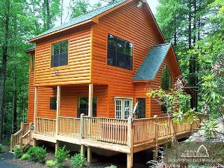 Chipmunk Chase   Hot Tub  Pool Table  Gas Fireplace  WiFi  Free Nights - Gatlinburg vacation rentals