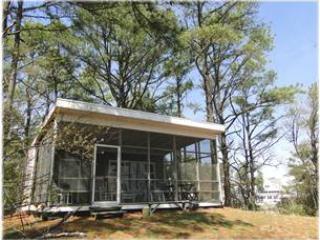 Shackeau East - Image 1 - Chincoteague Island - rentals