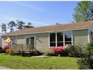 Bay Window - Image 1 - Chincoteague Island - rentals