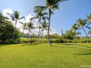 Keauhou Kona Surf and Racquet Club, Condo 7-102 - Kona Coast vacation rentals