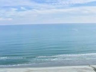RT1601 - Image 1 - Myrtle Beach - rentals