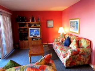 B0113 - Image 1 - Myrtle Beach - rentals