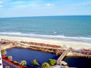 Cheap Myrtle Beach Studio by the Beach with a Balcony - Image 1 - Myrtle Beach - rentals