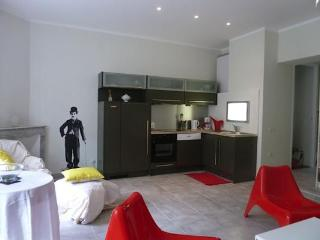 Carnot 40- 2 Bedroom Cannes Apartment, Provence - Cannes vacation rentals