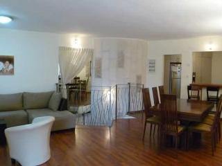 beautiful spacious 3 bedrooms close to Emek Refaim - Jerusalem vacation rentals