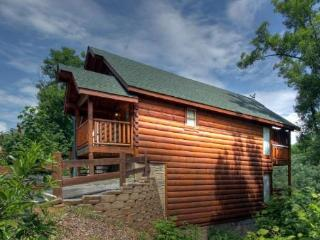 Nice Cabin with Internet Access and Parking - Sevierville vacation rentals