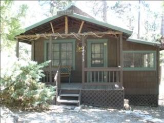 Oak Tree Cabin - Idyllwild vacation rentals