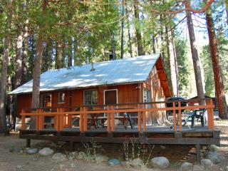 Perfect House with Television and DVD Player - Yosemite National Park vacation rentals