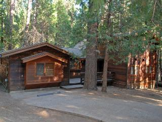 4 bedroom House with Internet Access in Wawona - Wawona vacation rentals