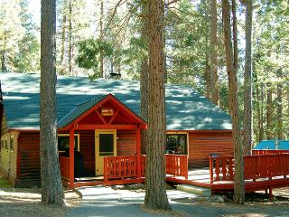 Nice 3 bedroom House in Yosemite National Park with Internet Access - Yosemite National Park vacation rentals