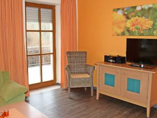 Vacation Apartment in Volkach - 700 sqft, great location, comfortable (# 2677) - Volkach vacation rentals