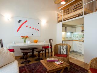 MASSIMO- largeCOZY LOFT for two, by the Duomo - Florence vacation rentals