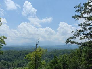 Chateau de Awesome Views - Gatlinburg vacation rentals