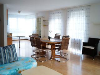 Vacation Apartment in Friedrichshafen - 926 sqft, comfortable, relaxing, warm (# 2716) - Baden Wurttemberg vacation rentals