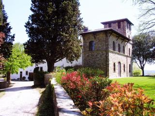 Villa of 110 Sq in Florence Chianti area with pool - Rignano sull'Arno vacation rentals