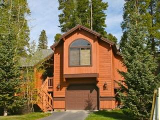 Park Forest - Dillon vacation rentals