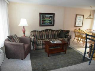 SURFSIDE Condominium Resort 1 Bedroom Lake Huron - Oscoda vacation rentals