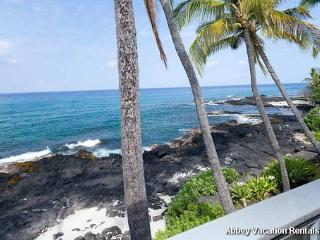 K6-HALEKAI4 - Kailua-Kona vacation rentals