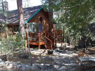 Mountain Paradise - Idyllwild vacation rentals