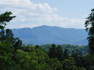 Grin and Bear It Eagle Springs - Gatlinburg vacation rentals