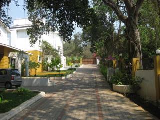 luxury Villa for short/long term rent . Anjuna Goa - Anjuna vacation rentals