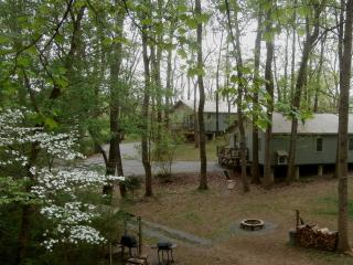 Nice 2 bedroom Cottage in Johnson City - Johnson City vacation rentals