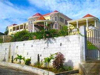 Blessings Apartment - St.Vincent - Petit St.Vincent vacation rentals