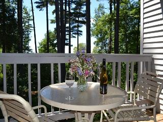 Enjoy the View! - Acme vacation rentals