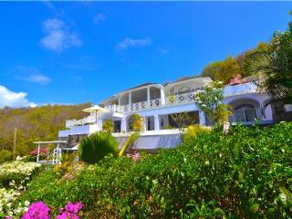 Lovely House with Internet Access and Private Outdoor Pool - Mount Pleasant vacation rentals