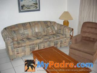 INTERNACIONAL #102: 1 BED 1 BATH - South Padre Island vacation rentals