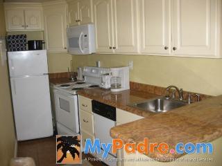 INTERNACIONAL #301: 1 BED 1 BATH - South Padre Island vacation rentals
