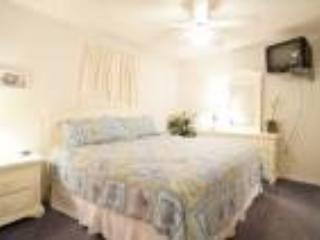 Grand Caribbean West 309 - Image 1 - Pensacola - rentals