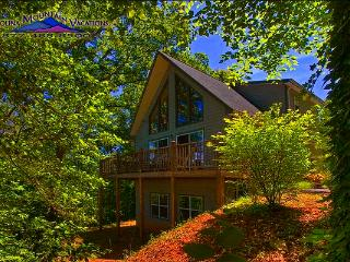 Bryson View Chalet - Bryson City vacation rentals