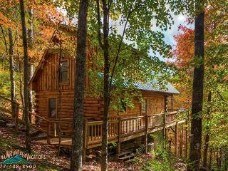 Kathy's Deep Creek Hideaway - Bryson City vacation rentals