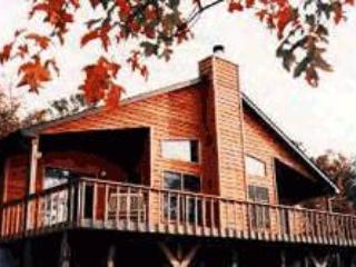 Bella Vista - Image 1 - Sylva - rentals